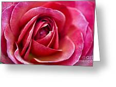 Pretty Pink Muted Greeting Card