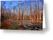 Pretty Swamp Scene Greeting Card by Susanne Van Hulst