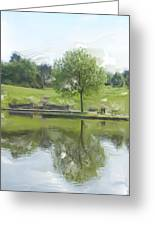 Pretty Tree In Park Picture.  Greeting Card