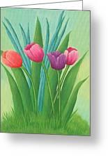 Pretty Tulips Greeting Card