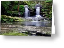 Pretty Waterfalls In Rainforest Greeting Card