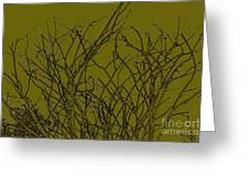 Prickly Branches Greeting Card