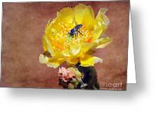 Prickly Pear And Bee Greeting Card