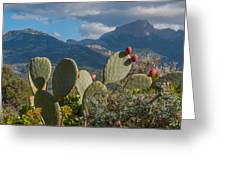 Prickly Pear Cactus And Mountains Greeting Card