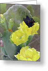 Prickly Pear Flower Greeting Card