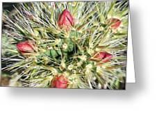 Prickly Pleasure Greeting Card