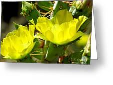 Prickly Pride Greeting Card
