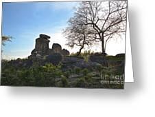 Pride Rock Greeting Card