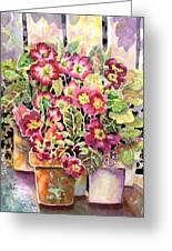 Primroses In Pots Greeting Card by Ann  Nicholson