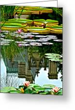 Prince Charmings Lily Pond Greeting Card