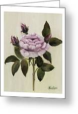 Princess Rose Greeting Card by Nancy Edwards