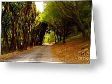 Private Property Greeting Card by Sharon Costa