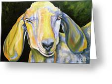 Prize Nubian Goat Greeting Card by Susan A Becker