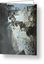 Probatic Pool, Jerusalem, 1844 Greeting Card
