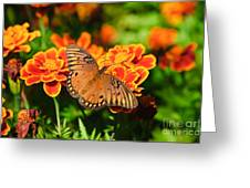 Proboscis Greeting Card