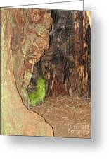 Profile Face In Tree Greeting Card