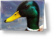 Profile Of A Mallard Greeting Card