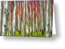 Progression Of Autumn Greeting Card