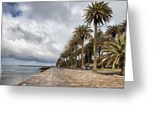 Promenade At Douro River In Foz District Of Porto Greeting Card