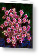 Promising Pink Petals Abstract Garden Art By Omaste Witkowski Greeting Card