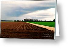 Promissing Field Greeting Card