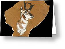 Pronghorn  Pictograph Greeting Card