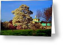 Prospect Park In Brooklyn II Greeting Card