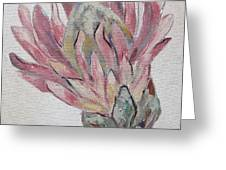 Protea Study 1 Greeting Card