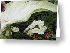 Protection From Above Greeting Card