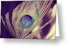 Proud As A Peacock Greeting Card by Nastasia Cook