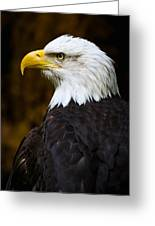 Proud Eagle Profile Greeting Card by Athena Mckinzie