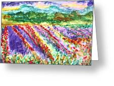 Provence France Field Of Flowers Greeting Card