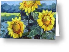 Provence Sunflower Trio Greeting Card