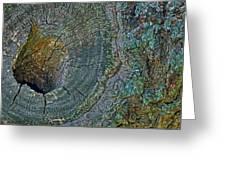 Pruned Limb On Live Oak Tree Greeting Card