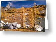 Prusik Peak Above Larch Grove Greeting Card