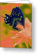 Psychadelic Butterflys Greeting Card