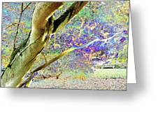 Psychedelic English Park Greeting Card