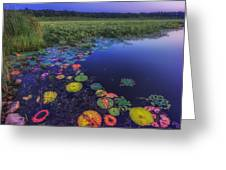 Psychedelic Shore - Great Meadows Nwr Greeting Card by Sylvia J Zarco