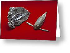 Pterichthyodes, Fish Fossil Greeting Card
