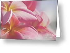 Pua Melia Ke Aloha Keanae Dreams Greeting Card