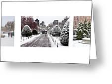 Public Garden Triptych Greeting Card