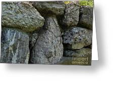 Pudding Stone  Greeting Card