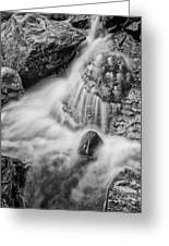 Puddle On The Rock Bw Greeting Card