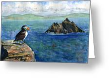 Puffin At Skellig Island Ireland Greeting Card
