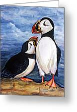 Puffin Friends  Greeting Card