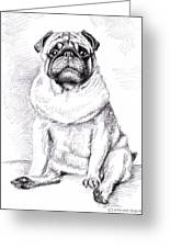 Pug Anton Greeting Card