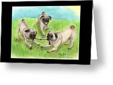 Pug Dog Playing Canine Animal Pets Art Greeting Card