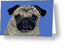 Pug On Blue Greeting Card