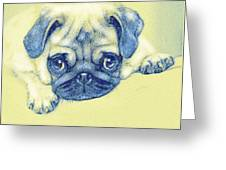 Pug Puppy Pastel Sketch Greeting Card
