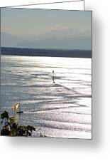 Puget Sound 2014 Greeting Card